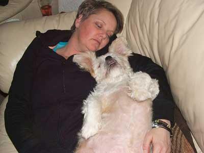 飼い主と眠る犬