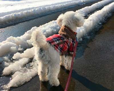 服で防寒対策