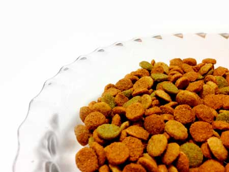 アレルギーになりやすい犬の食事とは?