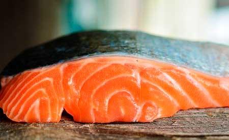 良質な魚ドッグフードの見分け方